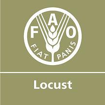 FAO LOCUST LOGO.jpg