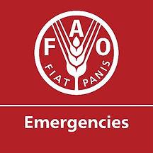 FAO EMERGENCY LOGO 1ab.jpg
