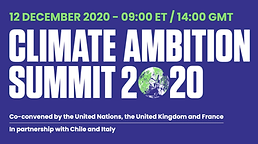 CLIMATE AMBITION SUMMIT 2020 1a.png