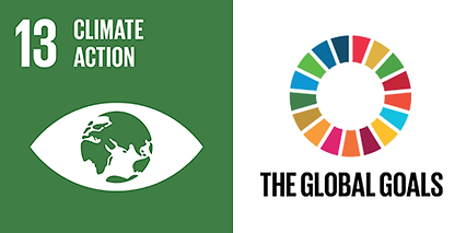 CLIMATE ACTION SDGs 1a.png