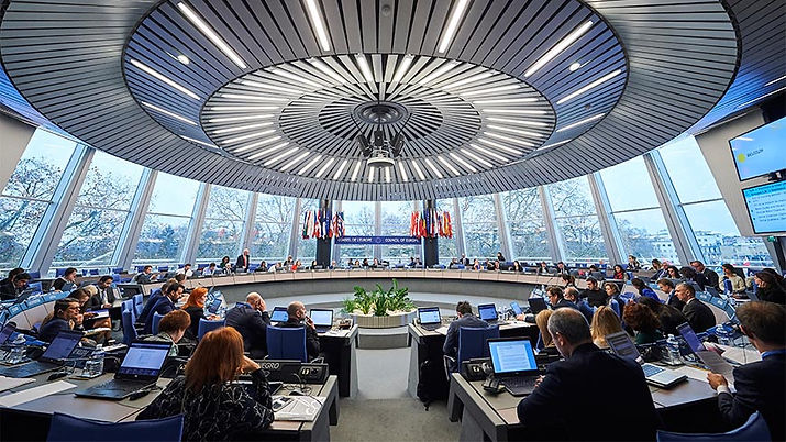 European Court of Human Rights 8a.jpg