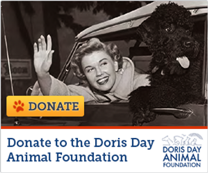 DORIS DAY ANIMAL FOUNDATION banner-donat