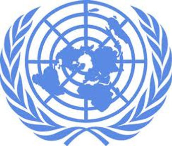 UNITED NATIONS LOGO.jpg