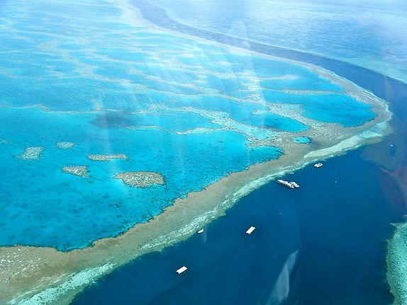 Great Barrier Reef 1ab.jpg