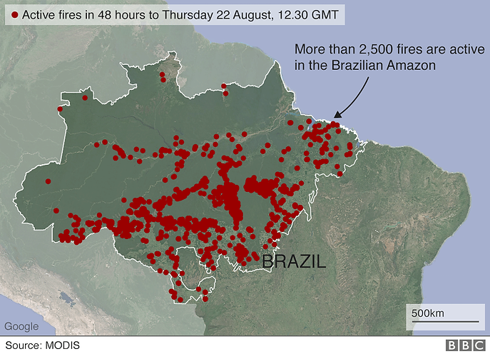 AMAZON RAINFOREST FIRES 2019 brazil_acti