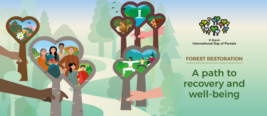 INTERNATIONAL DAY OF FORESTS 2021 2a.jpg