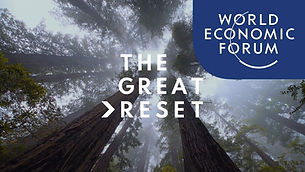 WEF THE GREAT RESET LOGO.jpg