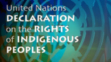 INDIGENOUS PEOPLES 2016 9.jpg