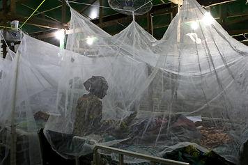WORLD MALARIA DAY 2021 8ab.jpg