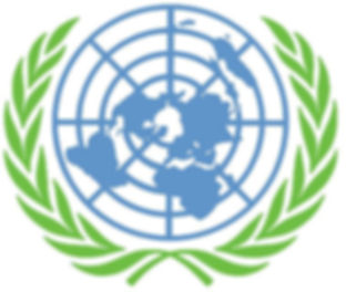 UNITED NATIONS LOGO bg.jpg