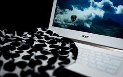 Acer fashion