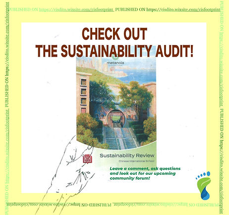 CIS Footprint Sustainability Audit Repor