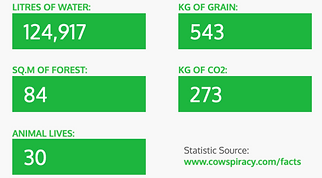 124,917 litres of water, 84 sq. m of forest, 543 kg of grain, 273 kg of CO2, 30 animal lives