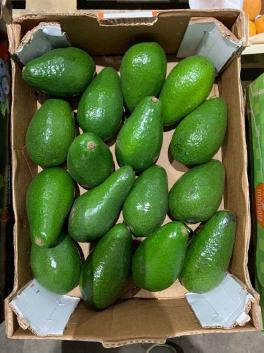 Авокадо Зелёный -1 шт