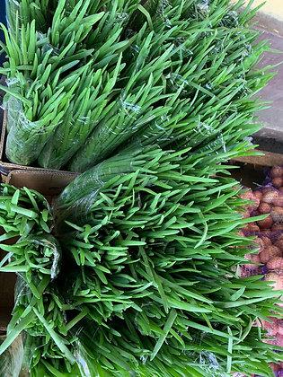 Лук зелёный - 100 гр (большой пучок)