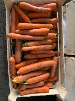 Морковь мытая - 1 кг
