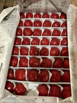 Помидоры 6/7 из Узбекистана -1 кг