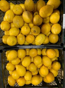Лимон - 1 штука