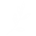 white leaves.png