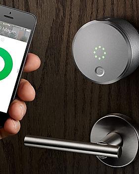 Smart Door Locks.jpg