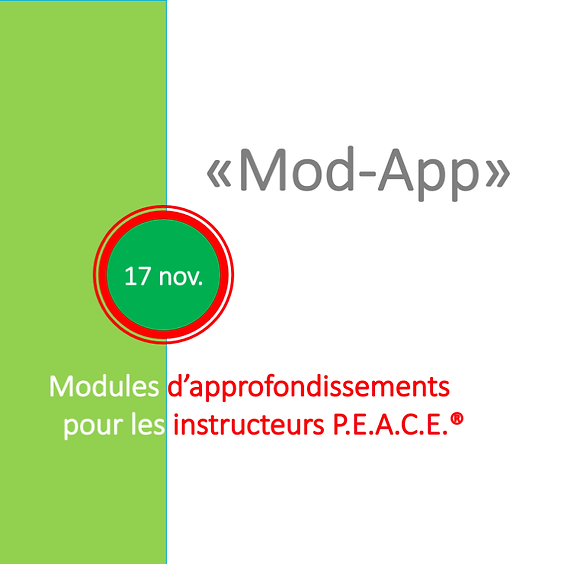 ModApp instructeurs PEACE - 17 novembre
