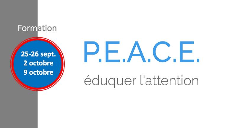 Formation au programme P.E.A.C.E.® (3)