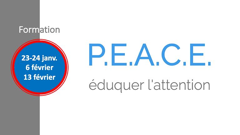 Formation au programme P.E.A.C.E.® (1)