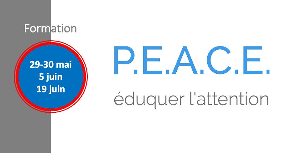 Formation au programme P.E.A.C.E.® (2)