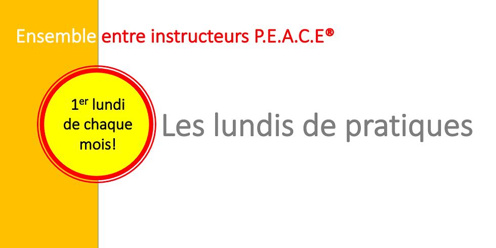 Pratiques de pleine conscience entre instructeurs P.E.A.C.E®