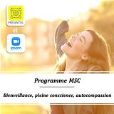 Programme MSC