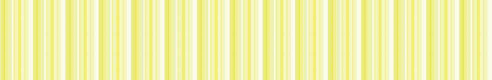 黄縞.jpg