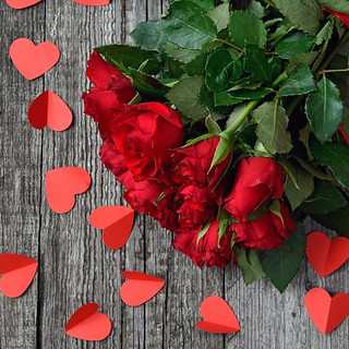 red-rose-3923288_640.jpg