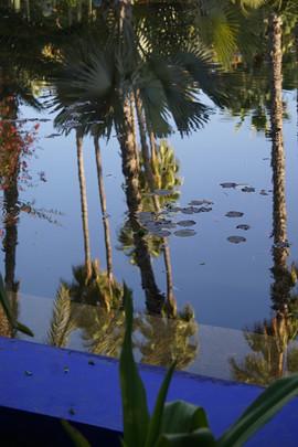 Bassins du Jardin Majorelle