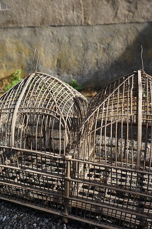cage/oiseaux/déco/figeac/brocante/Lot/Cahors/Inde/indus/métier/meubles/Bordeaux/Arcachon/Toulon/Aix en Provence/Montpellier
