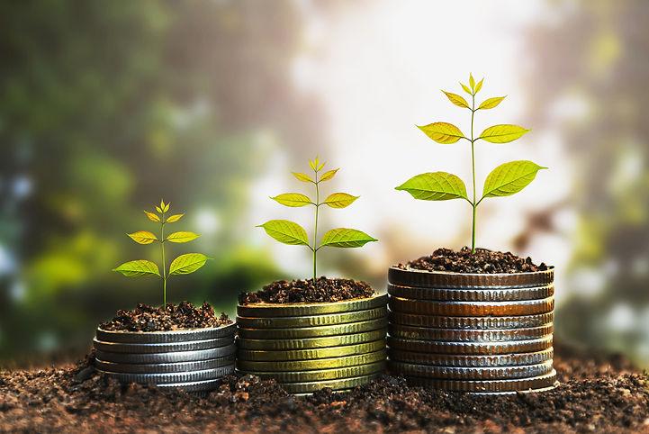 Plants growing on coins, löner, Tempura