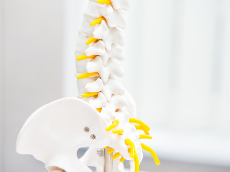Quick Guide to: Lumbar Disc Injuries