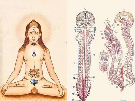 【WSお知らせ】チャクラ瞑想ワークショップ