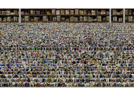 "Andres Gursky's ""Amazon"""
