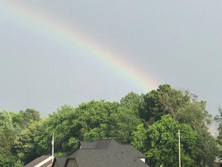 Rainbow Complaints