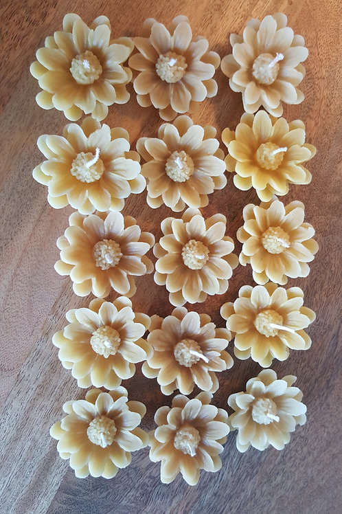 Floating Flower Candles | Marguerite Daisy | English 100% Pure Beeswax Candles