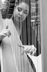 The fancy hotel harpist.jpg