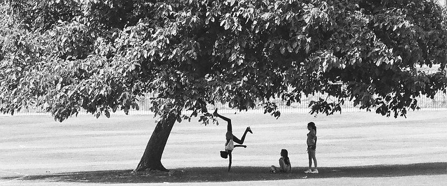 Kids%20playing%20under%20the%20tree_edit