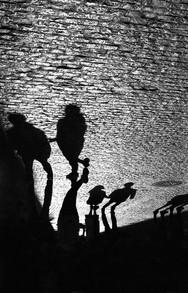 Barcelona - Shadows.jpg