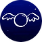 wings:favicon.png