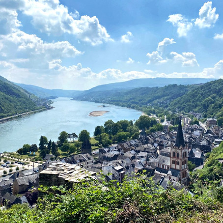 Riesling and the Wine Regions of Germany