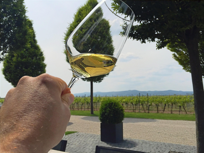 Grape Escape Pfalz - Full Day Wine Tour