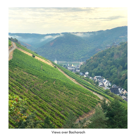 The German Wine Regions - Middle Rhein