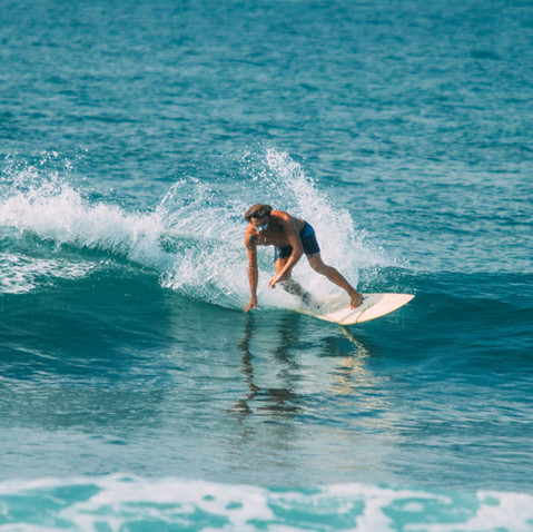 surf with consistent waves