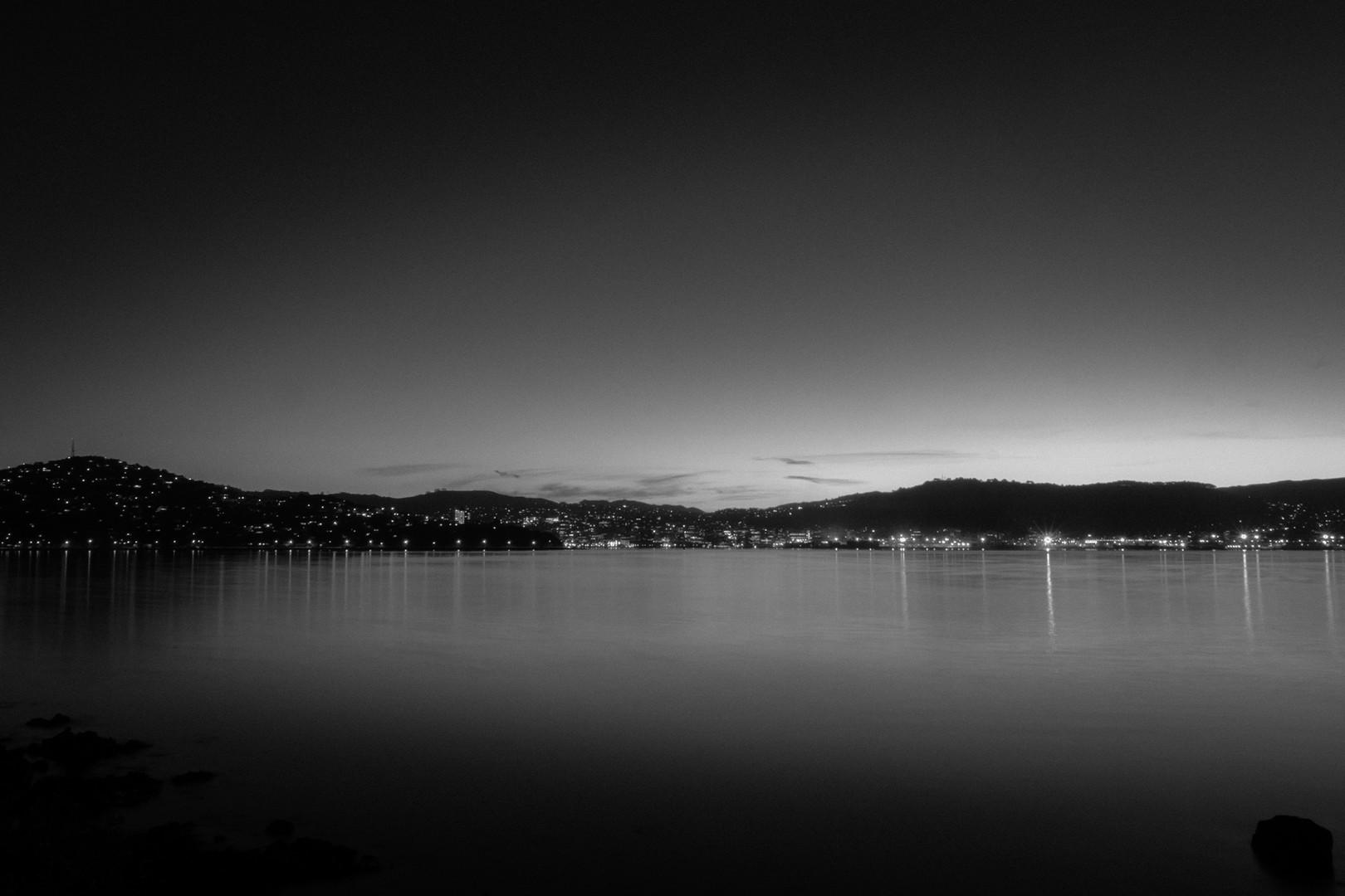 Moody shot of Wellington
