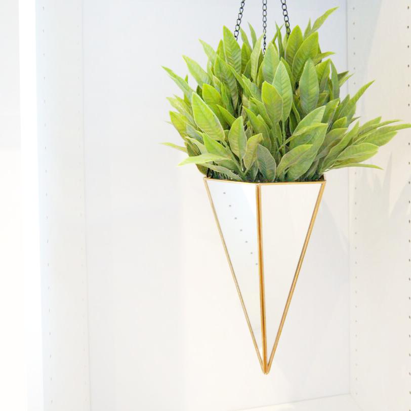 Decorative Greenery